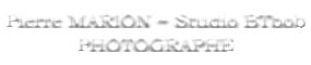 Pierre Marion – Studio BTbob Logo